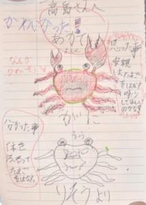 20130719上関祝島_アカテガニ放仔観察4