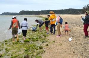 砂浜のいきもの調査を行う人たち