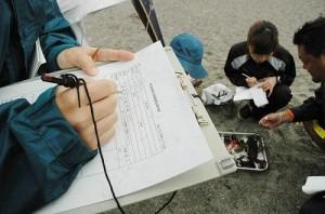 神奈川20080510砂浜海岸生物調査