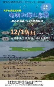 20151219奄美大島