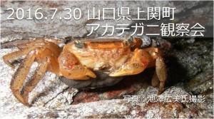 20160730上関長島