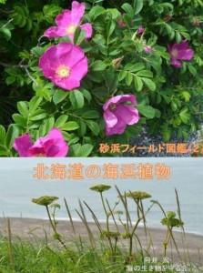 砂浜フィールド図鑑2_北海道の海浜植物